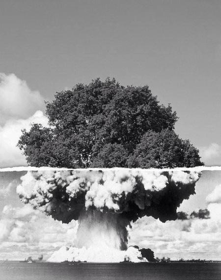 atomowe drzewo